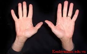 Hai bàn tay trắng