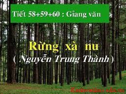 hình tượng cây xà nu trong rừng xà nu