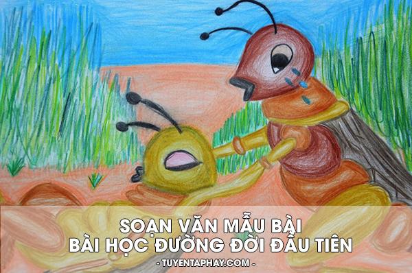 bai-hoc-duong-doi-dau-tien