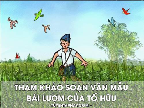 tham-khao-soan-van-mau-bai-luom-cua-to-huu