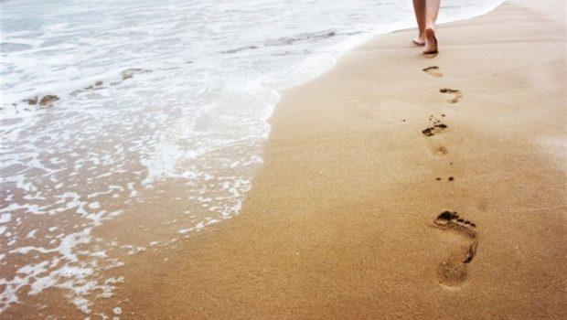 Soạn bài thơ sóng của xuân quỳnh