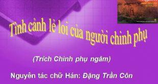 phan-tich-bai-tho-tinh-canh-le-loi-cua-nguoi-chinh-phu